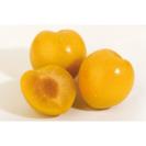 Ciruela amarilla unidad (63 gr aprox.)
