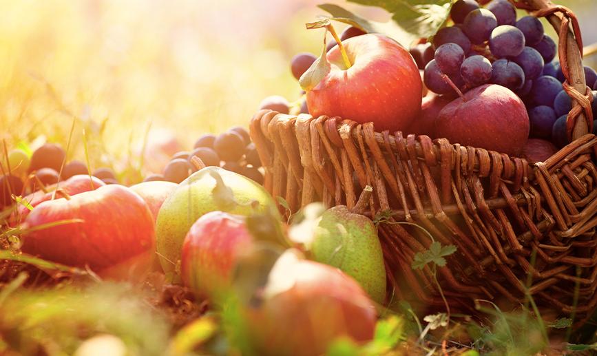 A la rica fruta de otoño