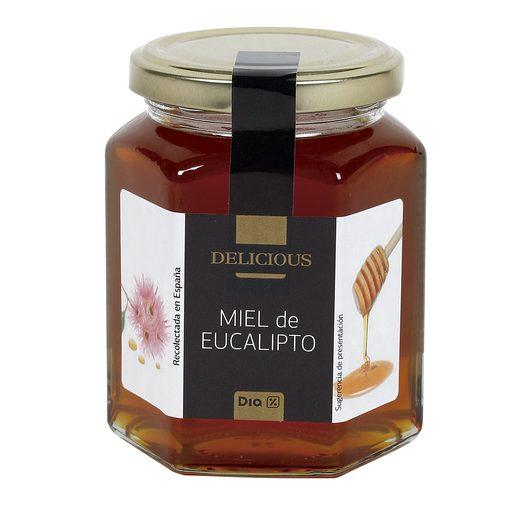 DIA DELICIOUS miel de eucalipto frasco 350 gr